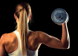 workout-exercise-dumbbells-gym-wallpaper-preview